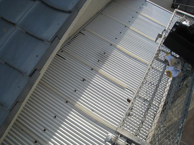 IMG_0333波板交換前 屋根修理 姫路市の写真