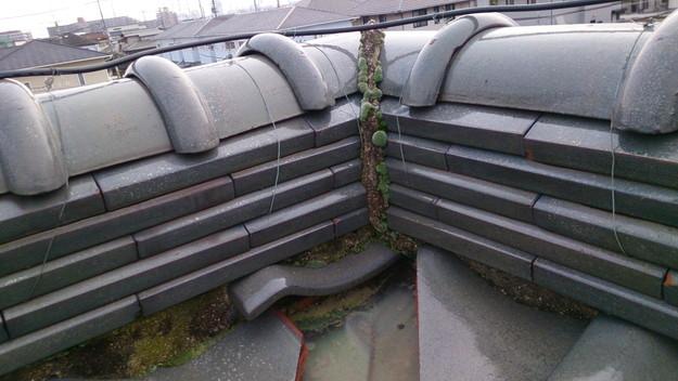 屋根修理工事前棟のし瓦DSC_0426