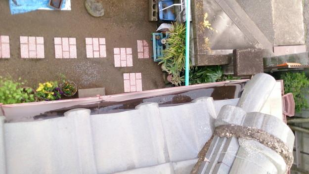 屋根修理工事前雨樋つまりで雨水が流れていない様子DSC_0451
