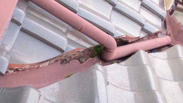 屋根修理工事前雨樋と板金部DSC_0444