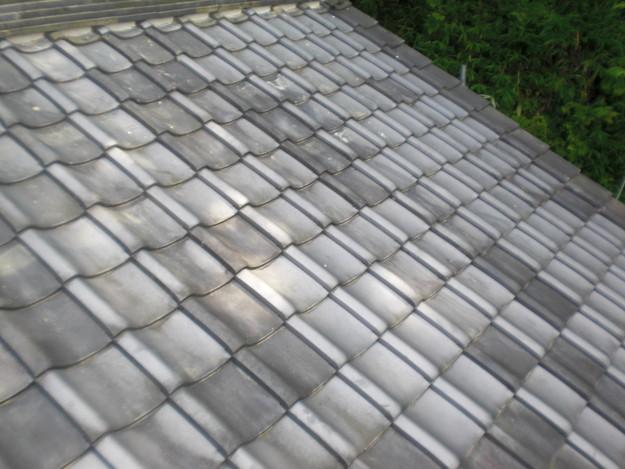 兵庫県のお寺屋根修理CIMG1461