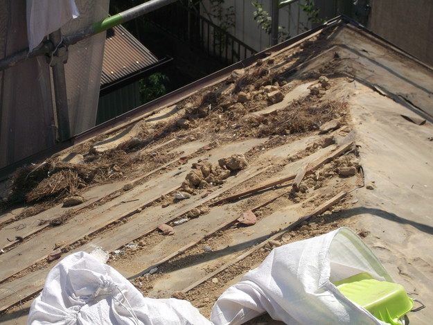 瓦撤去完了DSCF2007
