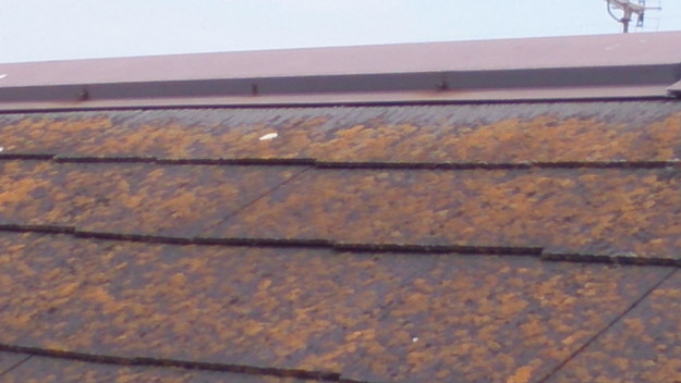 雨漏り修理雨漏り点検DSC_1039