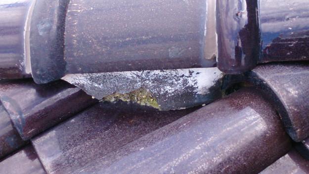 雨漏り修理雨漏り点検DSC_1238