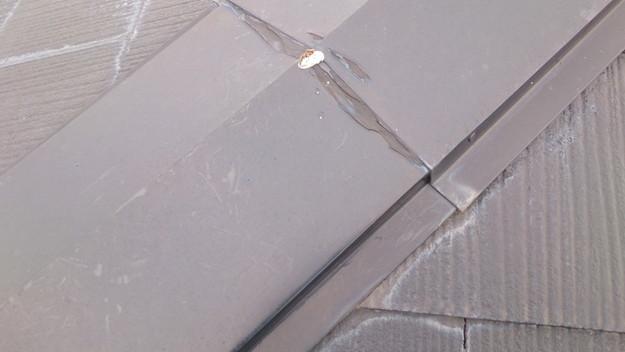 雨漏り修理雨漏り点検DSC_0589
