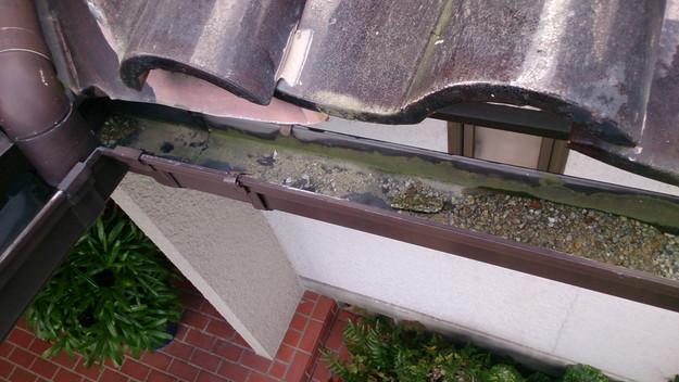 雨漏り修理雨漏り点検DSC_1206