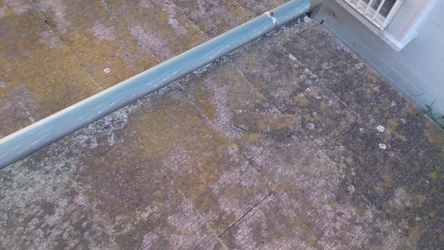 雨漏り修理雨漏り点検DSC_1445