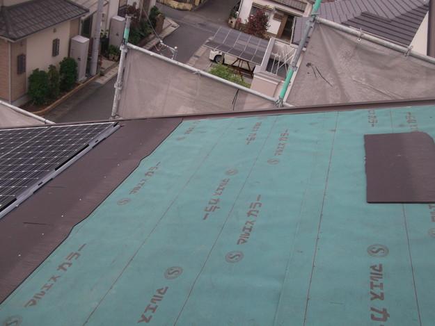 5屋根材張りDSCF2109