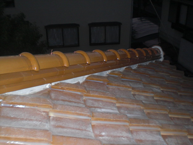 8棟瓦雨漏り対策修理CIMG1828
