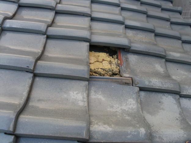 雨漏り対策修理瓦のひび割れ交換DSCI0944