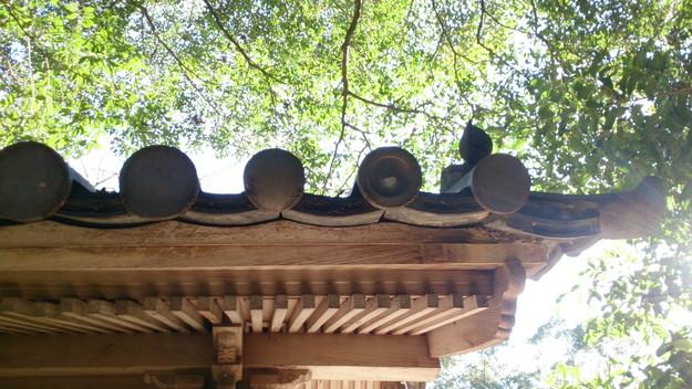 雨漏り点検と雨漏り修理神戸市明石市加古川市DSC_2164