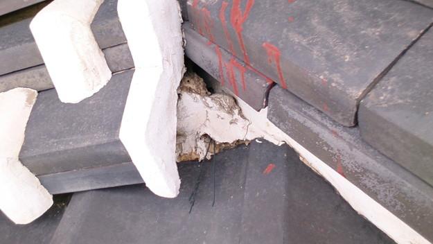 今月の雨漏り点検修理雨漏りの原因箇所DSC_3625