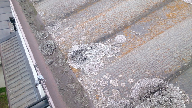 今月の雨漏り点検修理雨漏りの原因箇所DSC_3689